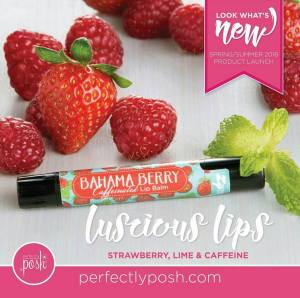 Bahama Berry Lip Balm